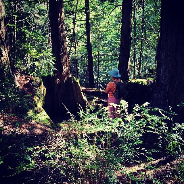Mom in the Redwoods